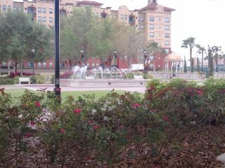 Cranes Roost Fountain