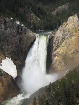 Lower Yellowstone Falls I