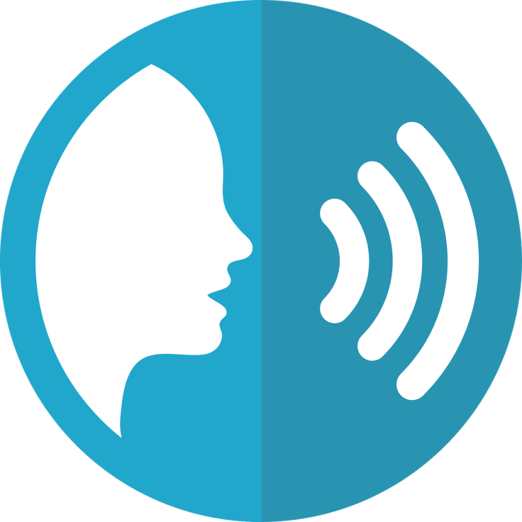 speech-icon-2797263_1280